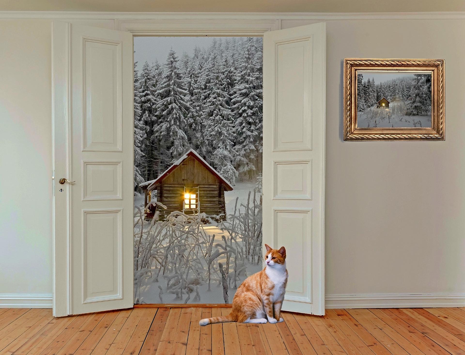 Mẫu cửa phòng ngủ đẹp cho ngôi nhà